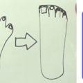 現代人の骨格の崩壊が始まっています。 骨格バランスの土台である足から崩れている!